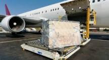 Cargo Malpensa, reintegrato da Giudice del Lavoro dipendente licenziato da una coop