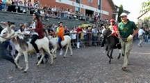 Festa parrocchiale a Bobbiate con giochi e tradizionale corsa degli asini