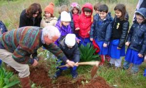 Vivaio Forestale Curno : Festa degli alberi: giovedì verranno piantate 270 nuove piante in