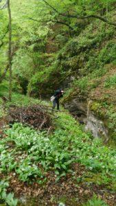 Un sentiero del Vellone