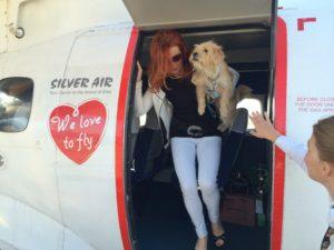 Un passeggero a bordo con il suo cane