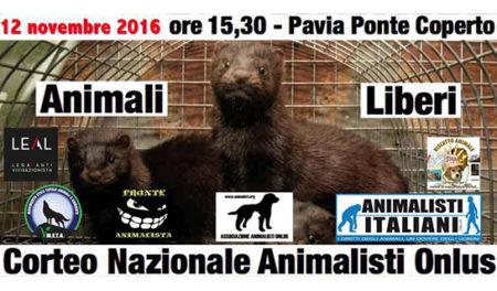 evento-pellicce-pv-12-nov